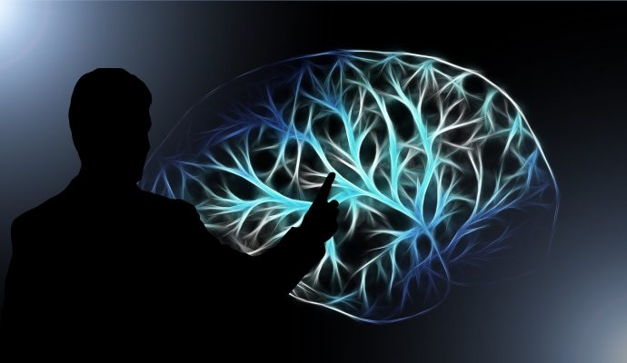 Neuroleading