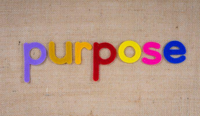 Purpose: Unternehmen im Spannungsfeld zwischen Sinn und Zweck (1. Staffel)