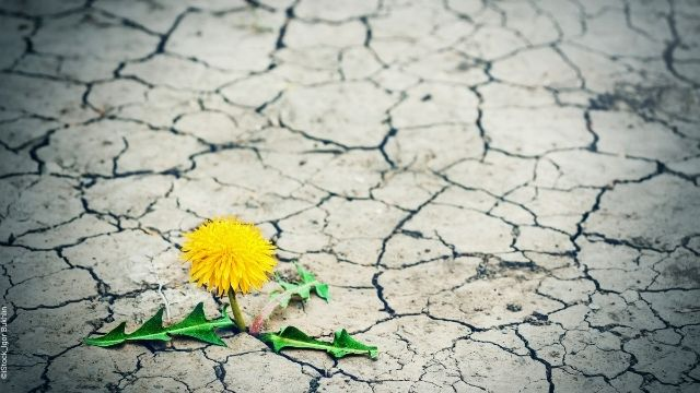 Resilienz – Den Stress wegatmen